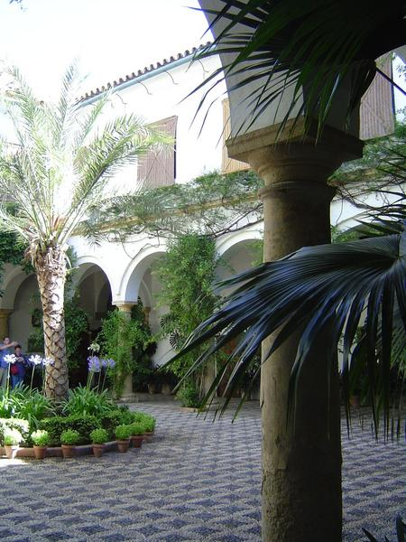 Spain: The City of Cordoba picture 10