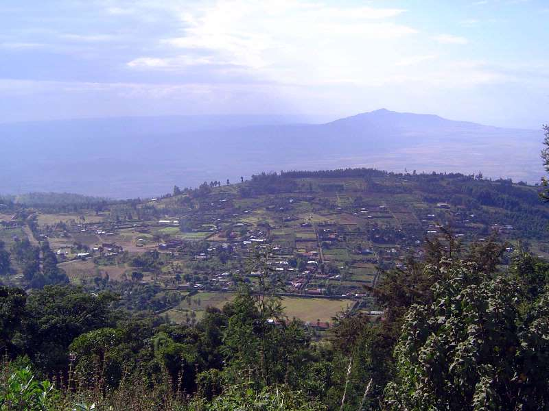 Kenya: Rift Valley Shamba