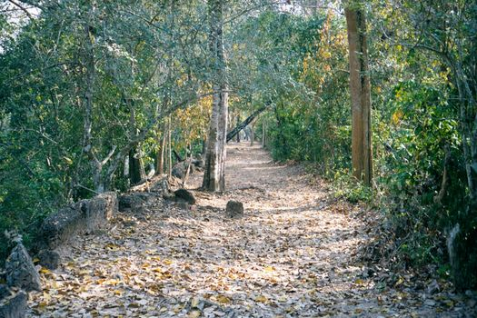 Cambodia (Angkor): The Periphery of Angkor Thom picture 13