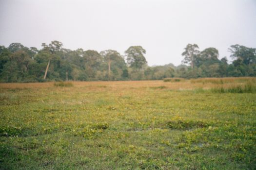 Cambodia (Angkor): The Periphery of Angkor Thom picture 18