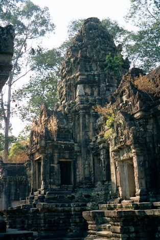 Cambodia (Angkor): Ta Prohm and Vicinity picture 1