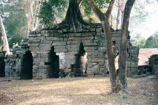 Cambodia (Angkor): Ta Prohm and Vicinity picture 6
