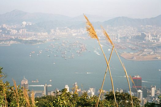 China: Hong Kong 2:From the Peak
