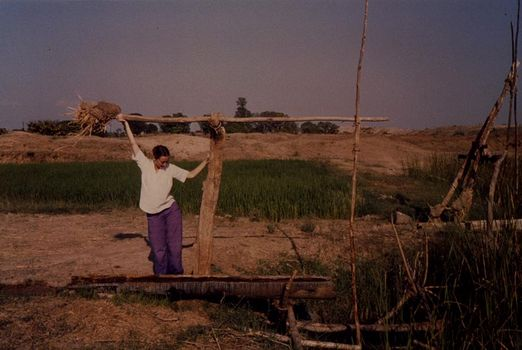 India Themes: Irrigation 1: Ancient Methods picture 5