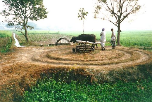 India Themes: Irrigation 1: Ancient Methods
