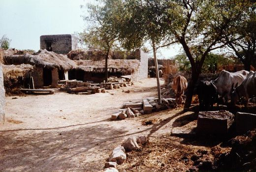 India Themes: Southern Villages picture 2