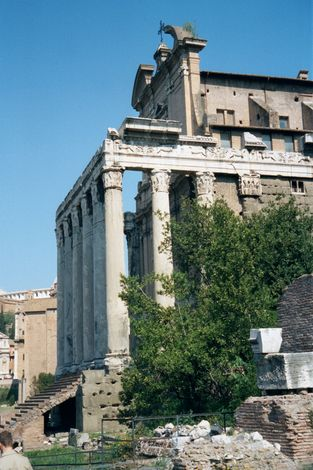 Italy: Classical Rome 1: The Forum picture 26