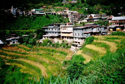 The Philippines: Banaue picture 5
