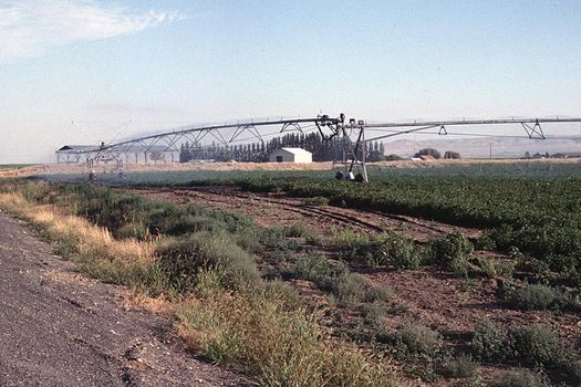 U.S.: West: Bonanza Farming in the Columbia Basin picture 11