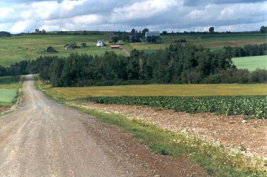 U.S.: East: Farming in Aroostook County picture 11