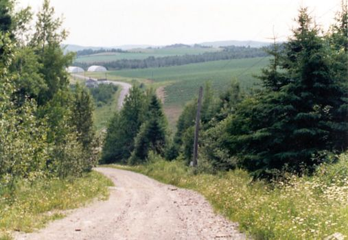 U.S.: East: Farming in Aroostook County picture 4
