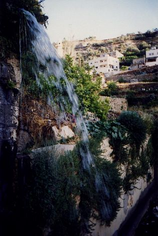 West Bank: Battir picture 6