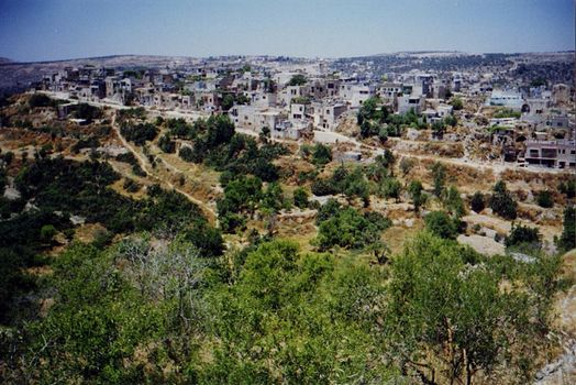 The West Bank: Deir Istiya and Salfit picture 10
