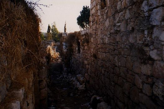 The West Bank: Deir Istiya and Salfit picture 3