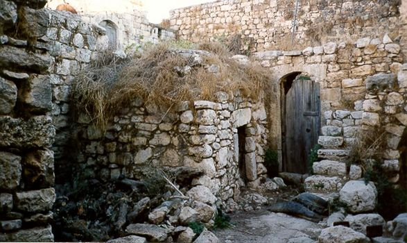 West Bank: Deir Istiya and Salfit picture 4