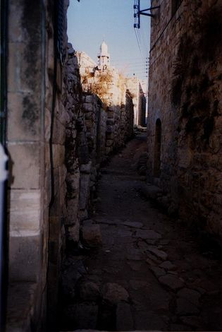 The West Bank: Deir Istiya and Salfit picture 6