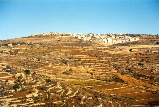 West Bank: Israeli Settlements picture 5