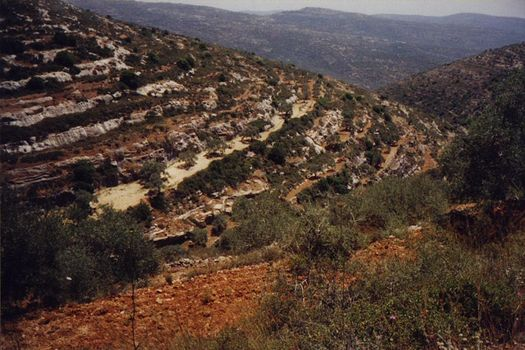 The West Bank: Northern Countryside picture 2