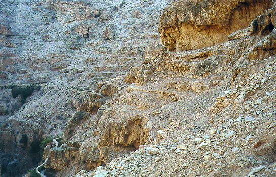 West Bank: Wadi Qelt and Ein Sultan picture 10
