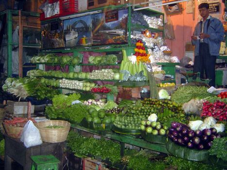 Northern India: Calcutta's New Market