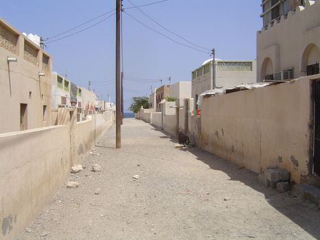Oman: Bustan picture 11
