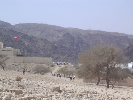 Oman: Bustan picture 12