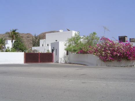Oman: Bustan picture 17