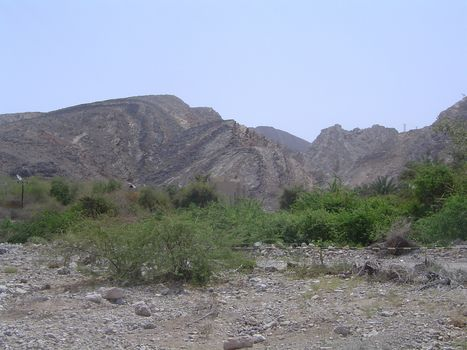 Oman: Muscat picture 10