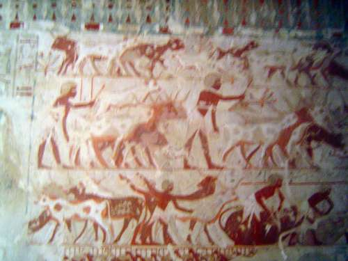 Egypt: Tomb of Userhet picture 3