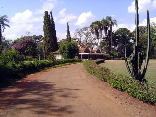 Kenya: Blixen and the Ngong Hills  picture 1