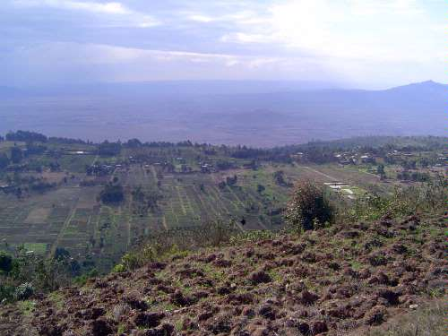 Kenya: Rift Valley Shamba picture 1