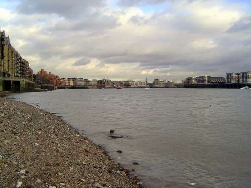 United Kingdom: London 1: Docks picture 29