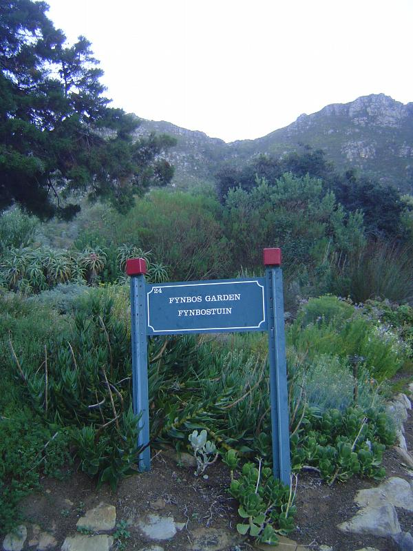 South Africa: Cape Town Suburbs picture 15