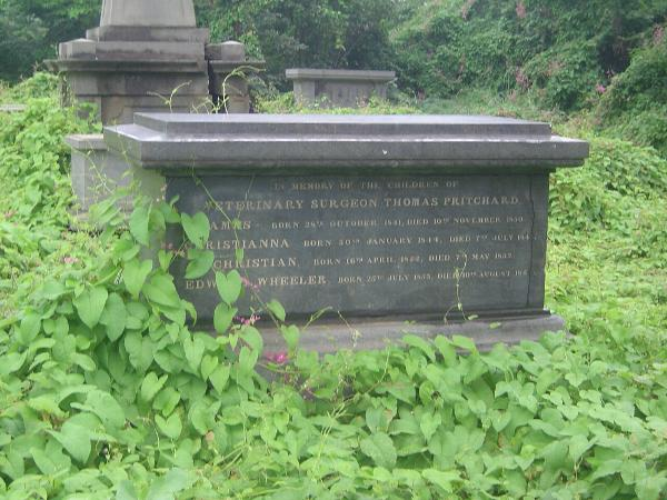 Peninsular India: Chennai/Madras 4: The Old English Burial Ground picture 10