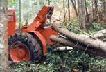 U.S.: East: Logging in the Maine Woods