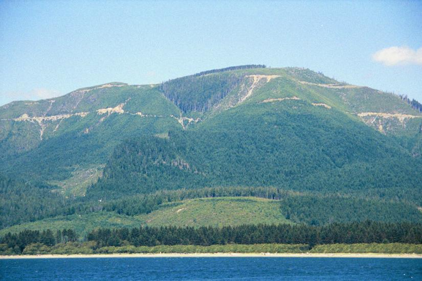 Canada (B.C.): Forest Clearance picture 12