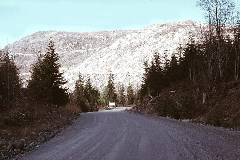 Canada (B.C.): Forest Clearance picture 8