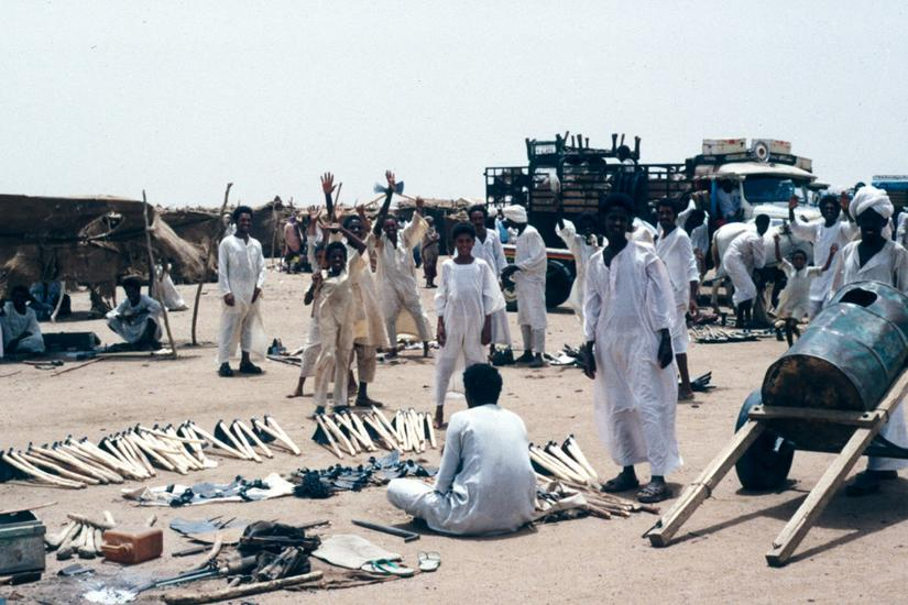 Sudan: Friday in Managil picture 1