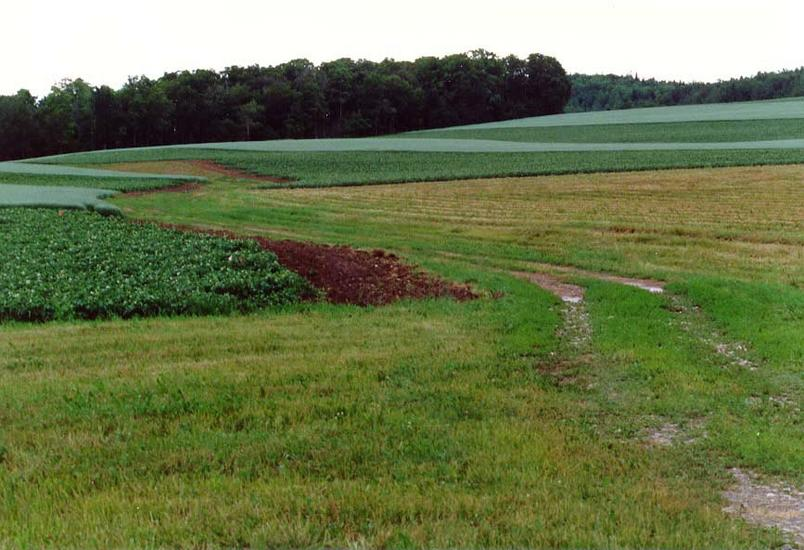 The Eastern United States: Farming in Aroostook County picture 8