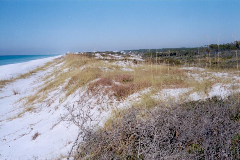 The Eastern United States: Seaside picture 1