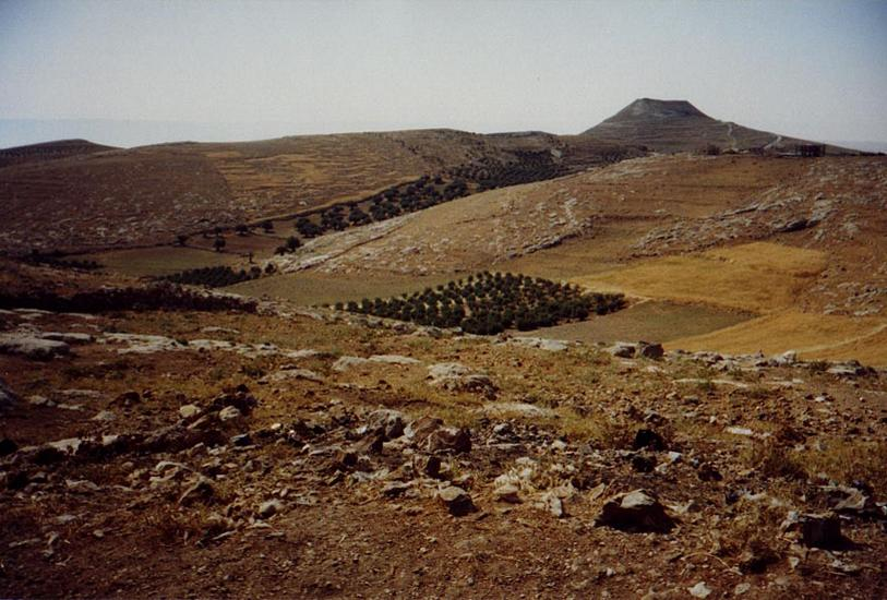 The West Bank: Southern Countryside picture 4