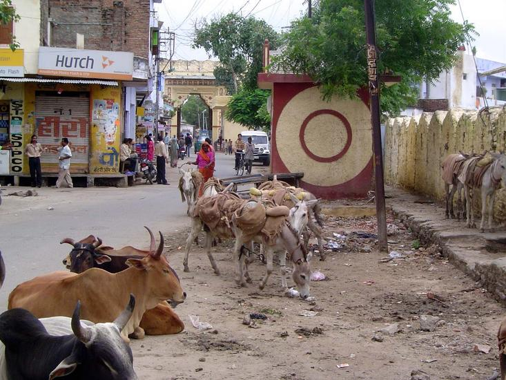 Peninsular India: Udaipur City picture 11