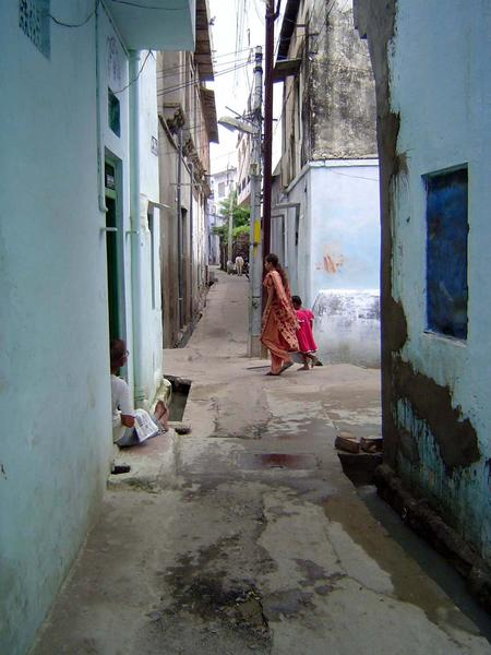 Peninsular India: Udaipur City picture 6