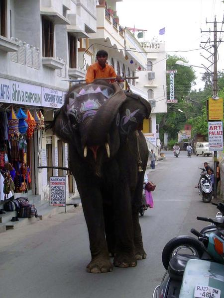 Peninsular India: Udaipur City picture 18