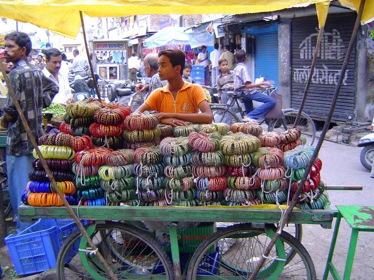 Peninsular India: Udaipur City picture 16