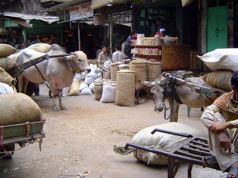 Pakistan: Lahore: the Old City picture 22