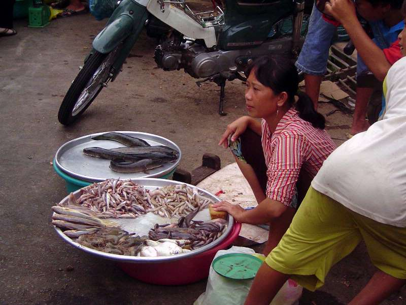 Vietnam: HCMC to Cantho picture 31