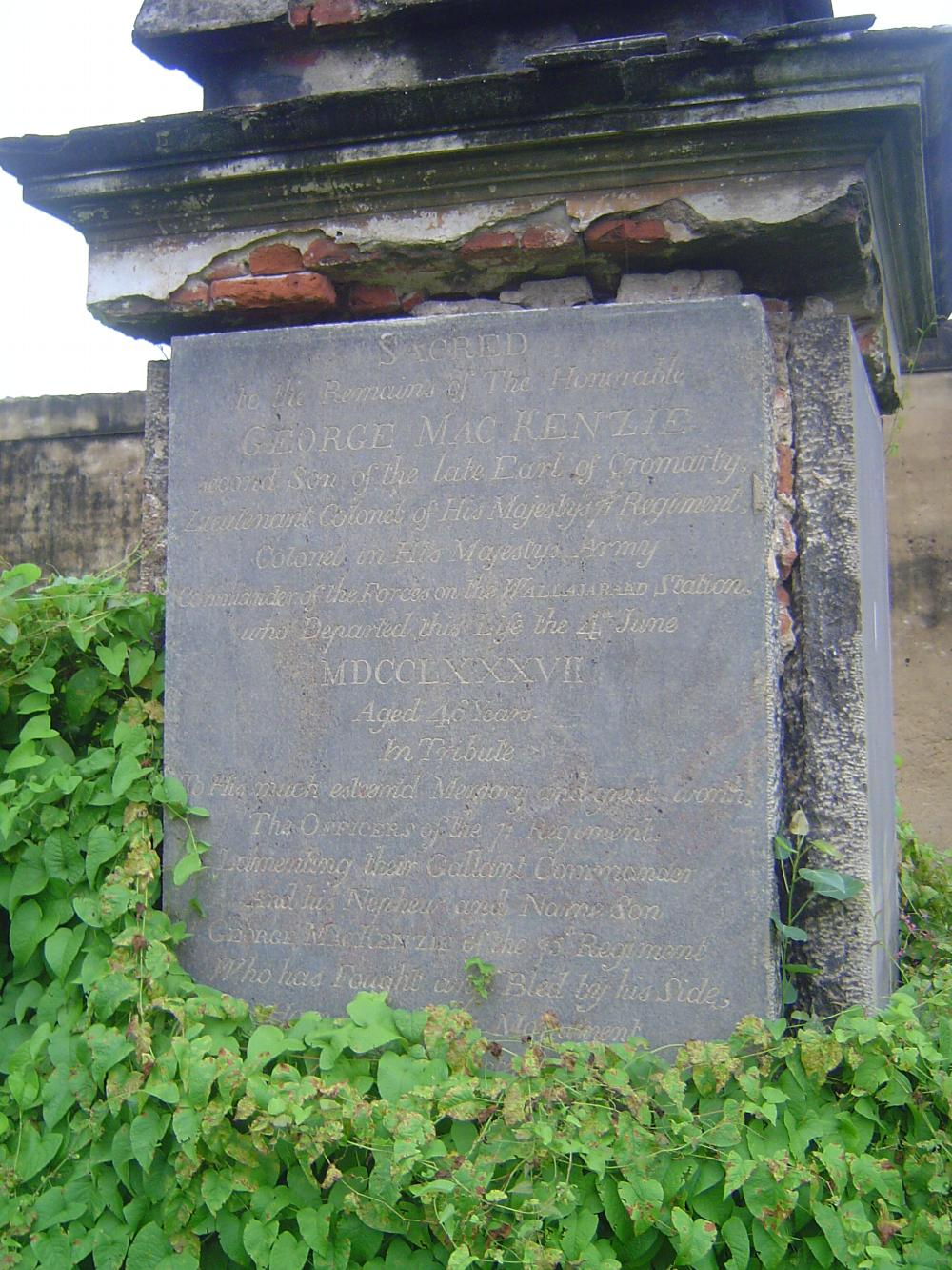 Peninsular India: Chennai/Madras 4: The Old English Burial Ground picture 13