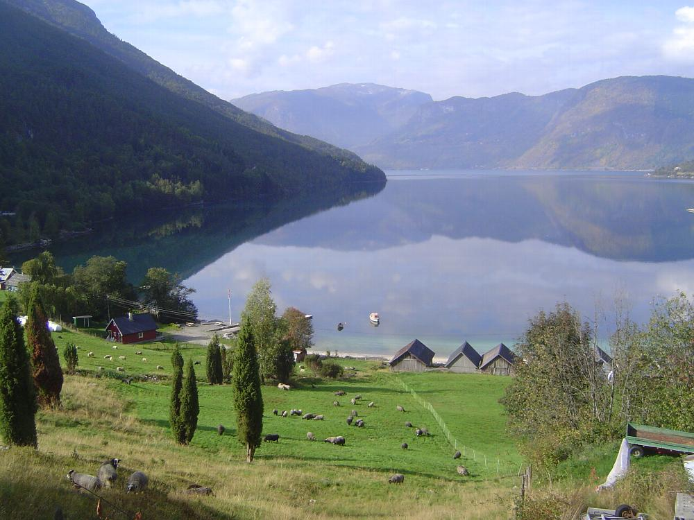 Norway: Indre Sogn picture 13