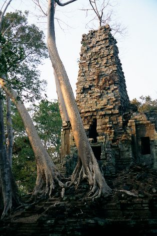 Cambodia (Angkor): Monuments in Angkor Thom picture 16